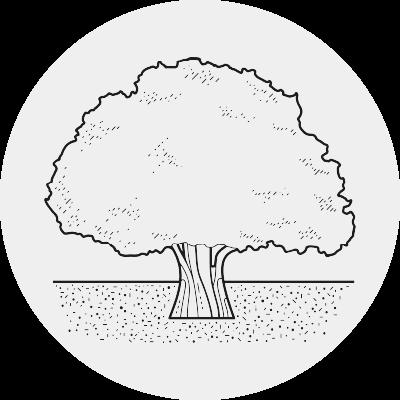 Logo Dovetail